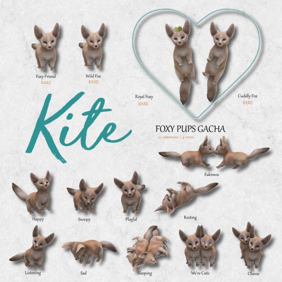 Foxy Pups Gacha Ad2